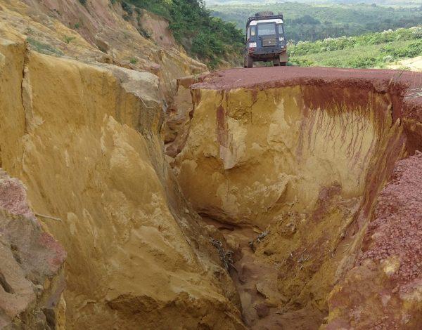 nr 37 _ Kongo Brazzaville into Tarzan Area