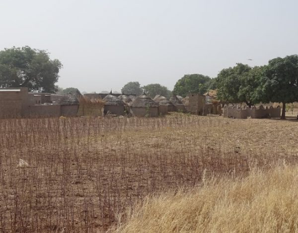nr 48 _ Lieblings Burkina Faso
